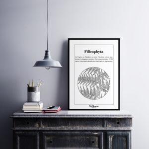 affiche-decorative-botanica-filicophyta-shokoon-lafficheuse
